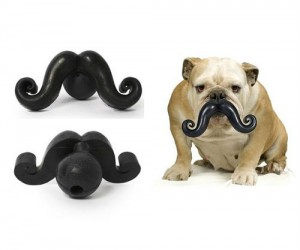 Probably the funniest chew toy I've ever seen now your dog can look classy and sophisticated as he is slobbering all over this dog mustache chew toy