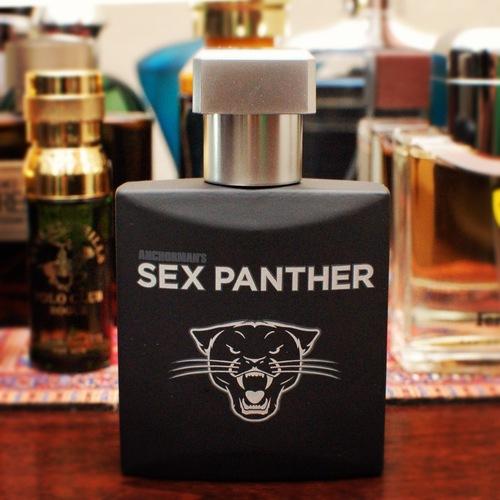 Adult Guide Cologne