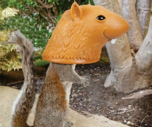Big Head Squirrel Feeder – Because why shouldn't feeding squirrels be absolutely hilarious…