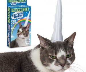 Turn your cat into a beautiful mythical creature with the inflatable unicorn horn for cats – and as you can see from this happy customer's photo your cat will love
