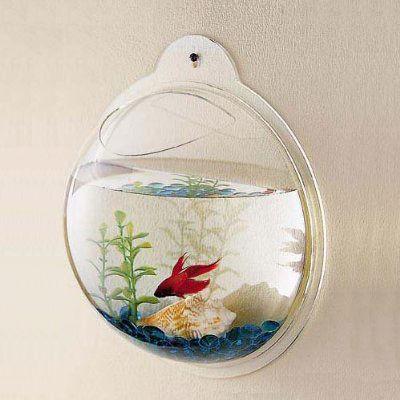 porthole fishtank bubble