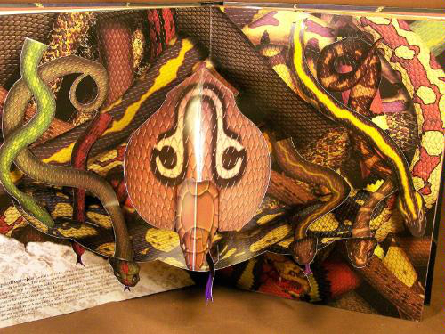 The Pop Up Book Of Phobias Shut Up And Take My Money