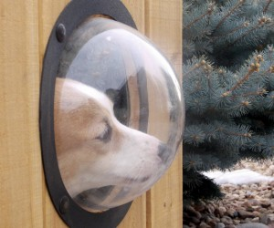 Fence Window For Pets – Now you can let your dog see exactly what's going on, on the other side of the fence.