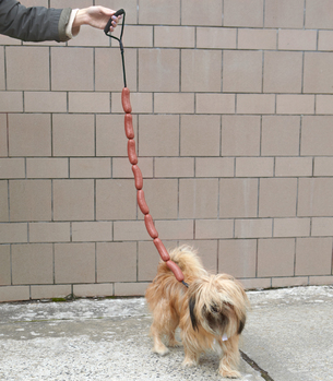 Sausage Link Dog Leash...