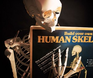 What can you do with an anatomically correct life size cardboard skeleton? The real question is what can't you do with it!?
