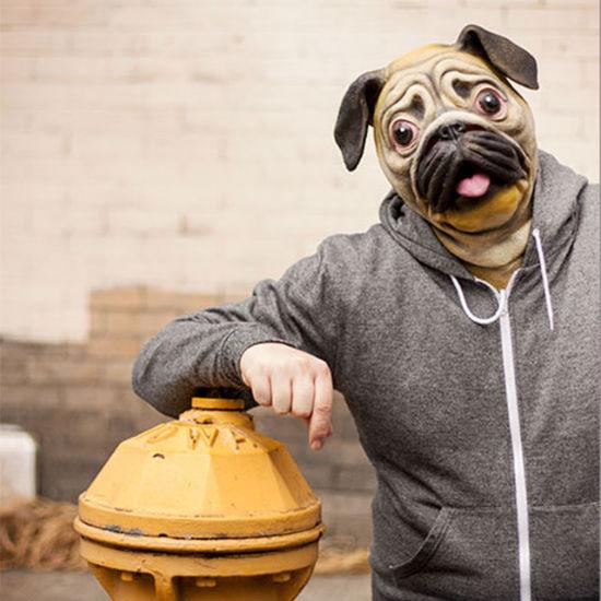cute pug mask