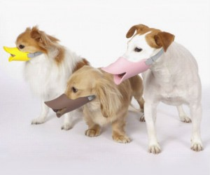 Duckbill Dog Muzzle – Your dog will be as harmless as a duck, and just as funny too!