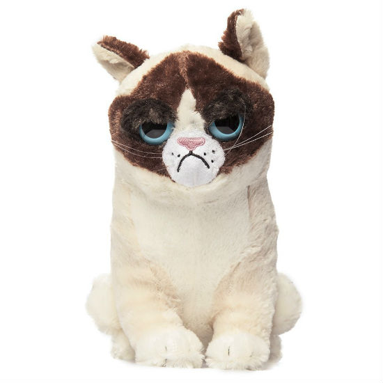 i want a cat so bad