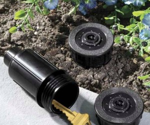 Who would think to look inside your pop up sprinkler for a spare key?