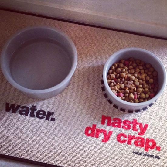 water nasty dry crap pet food mat
