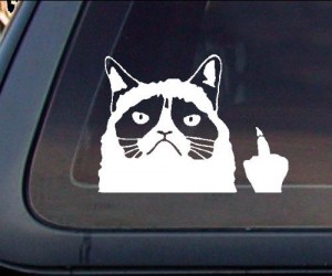 Let the person riding your bumper know how you feel with the help of the good ol' grumpy cat attitude!