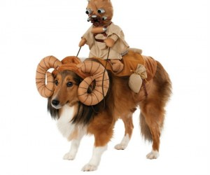 Bantha Dog Costume – Your dog will make the perfect ride for a Tusken Raider