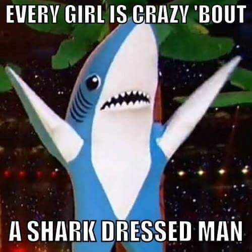every-girl-is-crazy-bout-a-shark-dressed-man