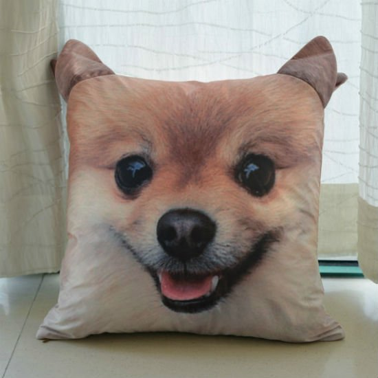 pomeranian face pillow