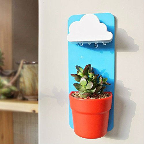 rain cloud planter