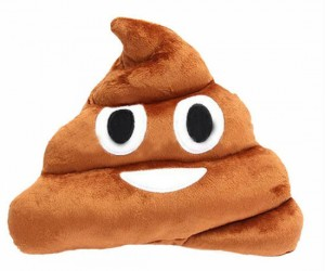 This pile of poop pillow is just too stinking cute!