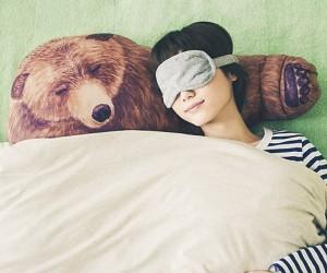 The bear hug pillow – Perfect for hibernating with.