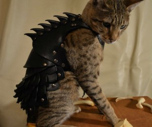 Cat Battle Armor – Turns any cat into an unstoppable killing machine.