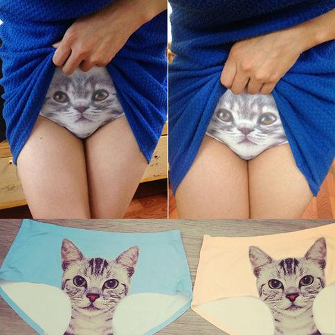 cat-underwear