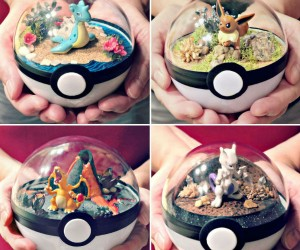 Pokeball Terrariums!