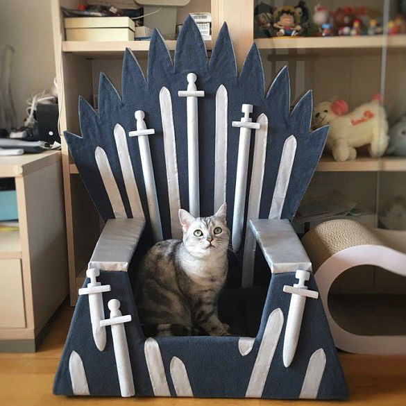 game of thrones cat bed