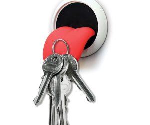 Magnetic Tongue Key Holder!