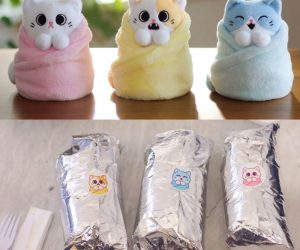 Purritos – Introducing Purritos! Savory, salty, and sweet: these purr-fectly wrapped cats come in three irresistible flavors