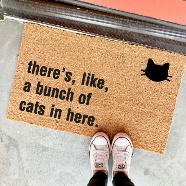 theres like a bunch of cats in here doormat