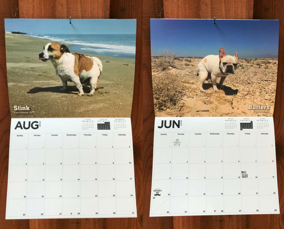 dogs pooping calendar