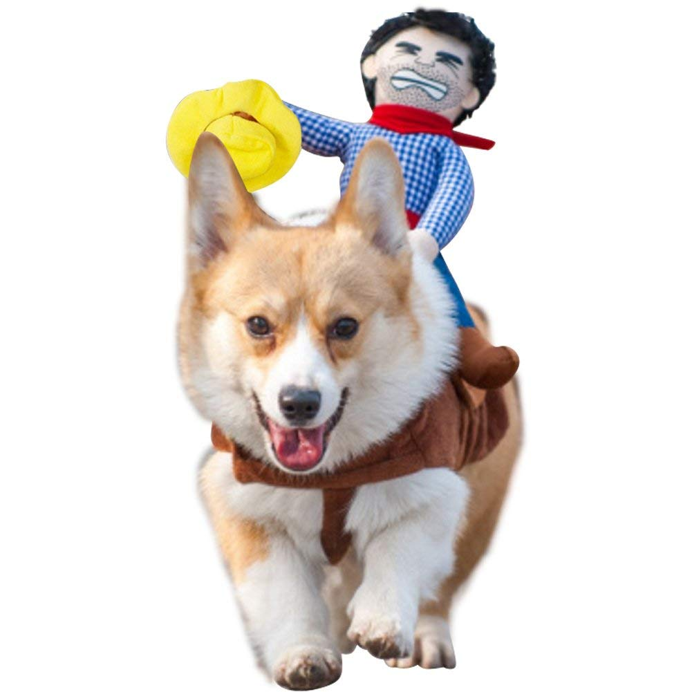 rodeo dog costume