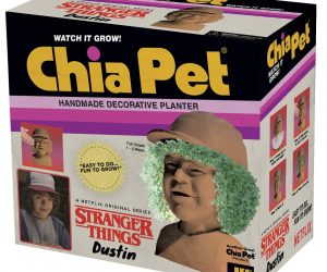 Stranger Things Dustin Chia Pet – Chia Pets are the perfect and affordable gift for any budget. Both kids and adults will love to watch chia planters sprout and develop into