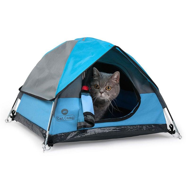 cat camp cat tent