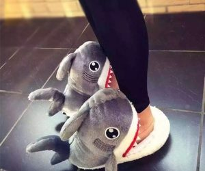 These slippers look like a shark is eating your feet