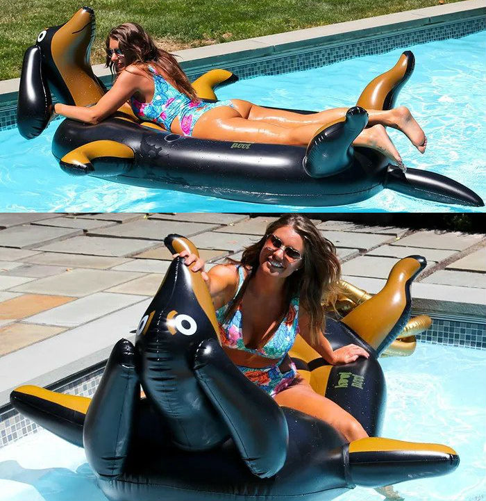 wiener dog pool float