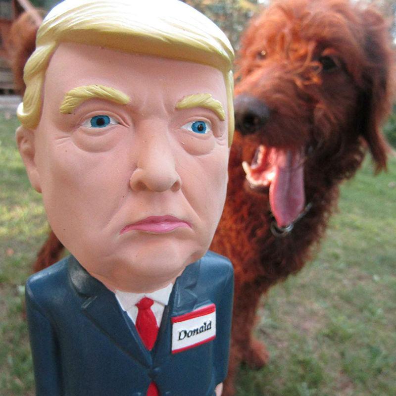 trump dog toy