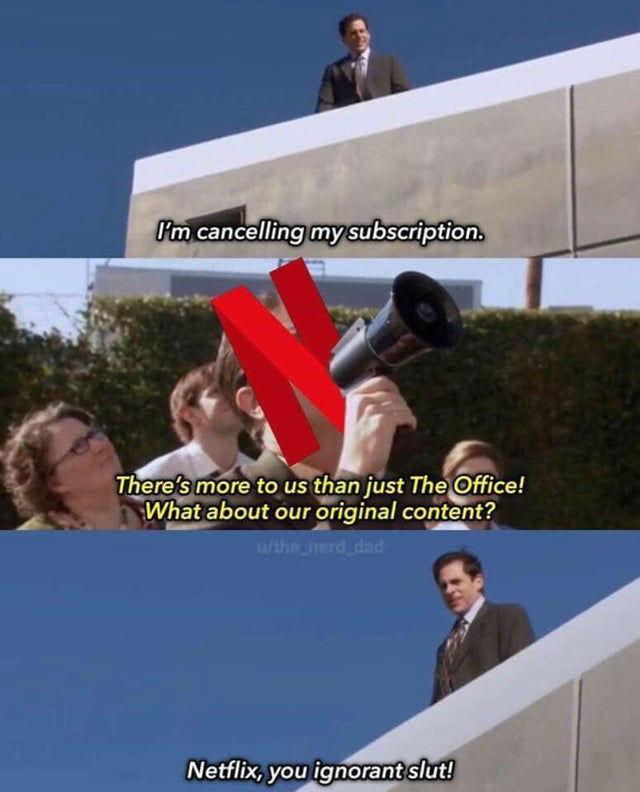 netflix you ignorant slut office meme