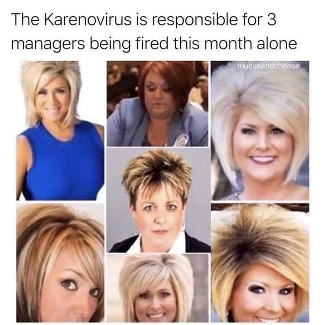 the karenovirus meme