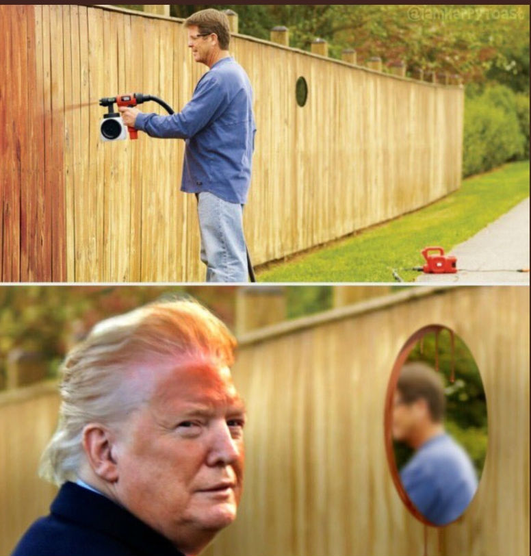 trump orange face meme fence spray paint
