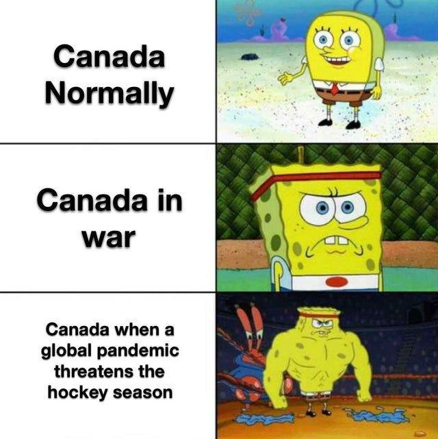 canadian corona virus meme