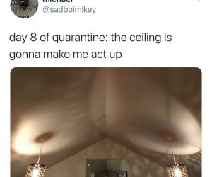 Day 8 Of Quarantine The Ceiling Is Gonna Make Me Act Up – Coronavirus Meme