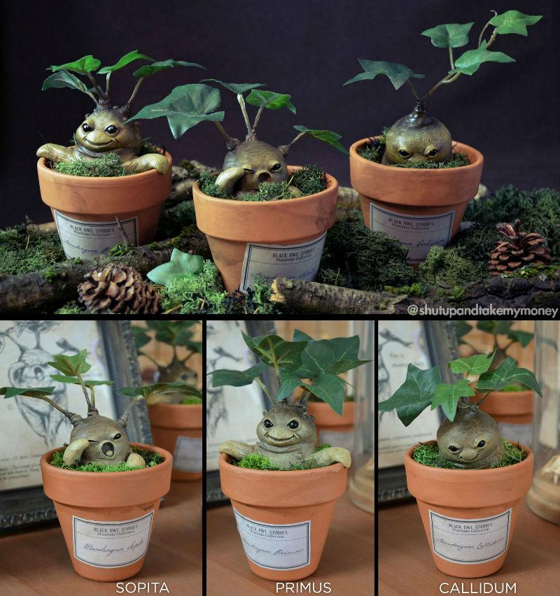 harry potter mandrake planters