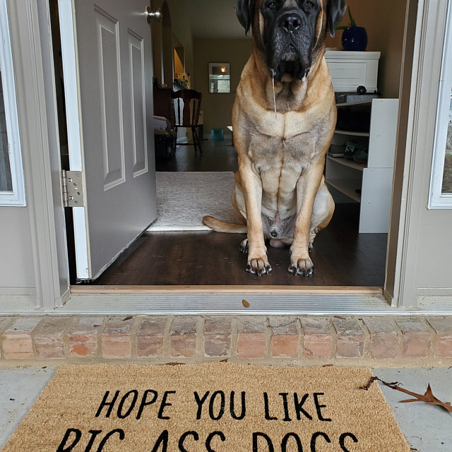 hope you like big ass dogs doormat