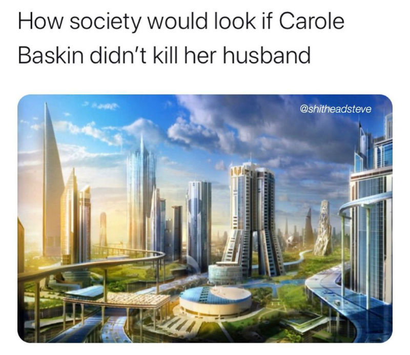 how society would look if carole baskin didnt kill her husband