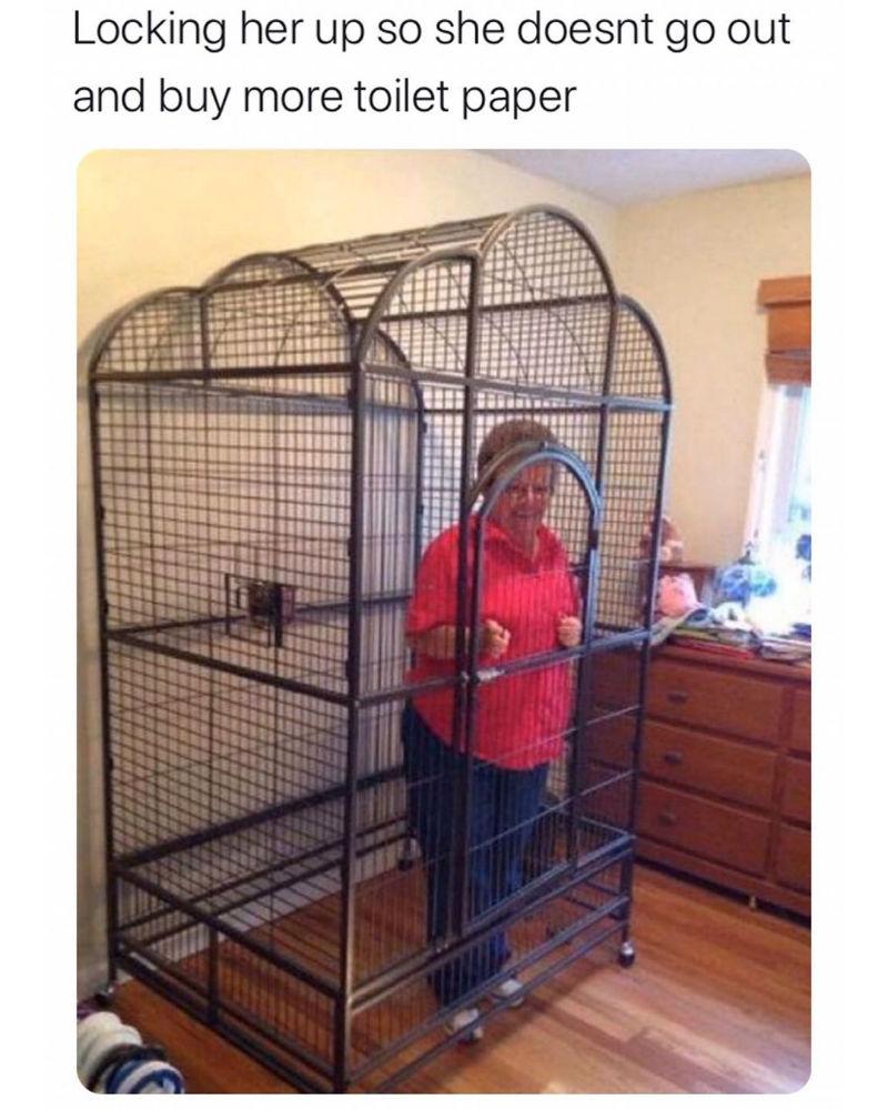 locking her up so she doesnt buy more toilet paper meme