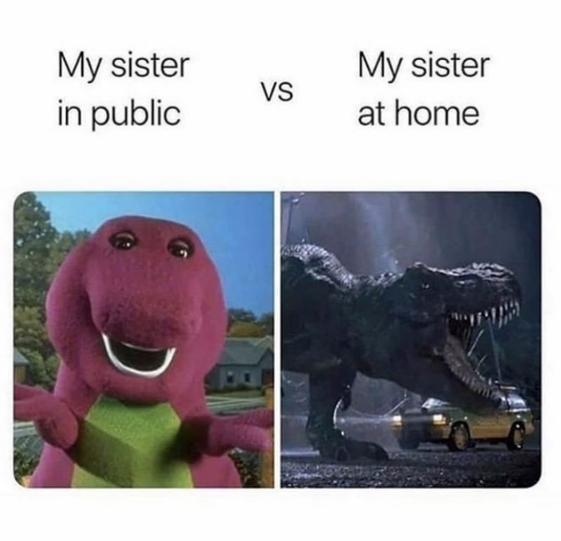 my sister in public vs my sister at home