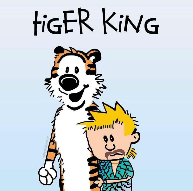 tiger king calvin and hobbes meme