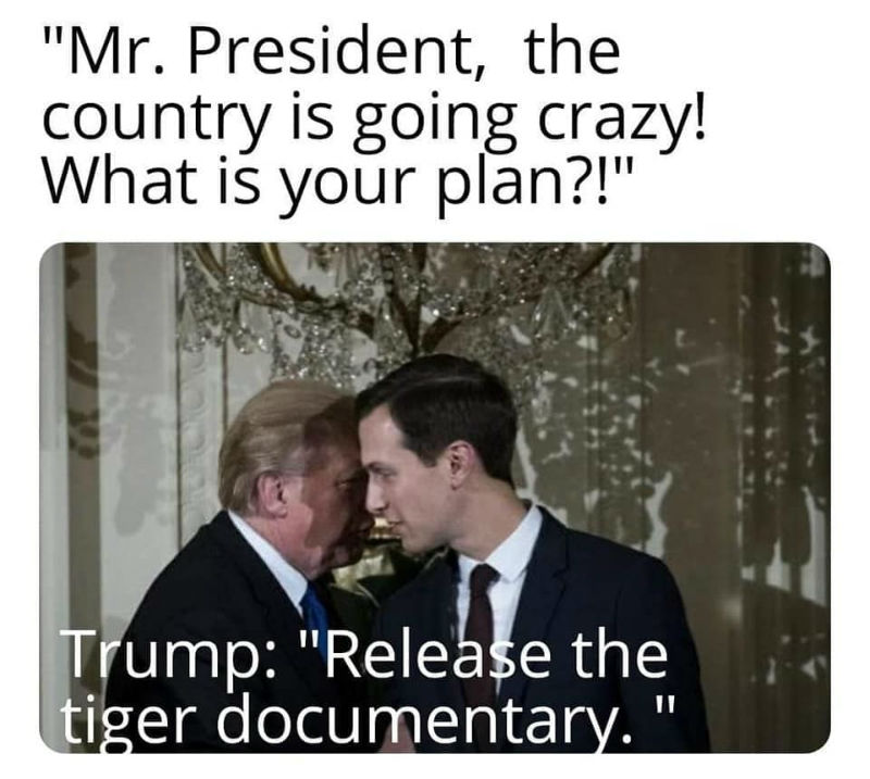 Trump Release The Tiger Documentary Tiger King Memes Shut Up