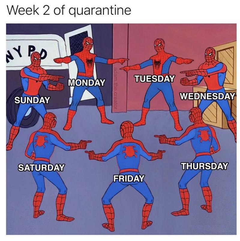 week 2 of quarantine spiderman coronavirus meme