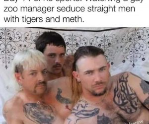 Day 14 Of No Sports – Watching A Gay Zoo Manager Seduce Straight Men With Tigers And Meth – Meme