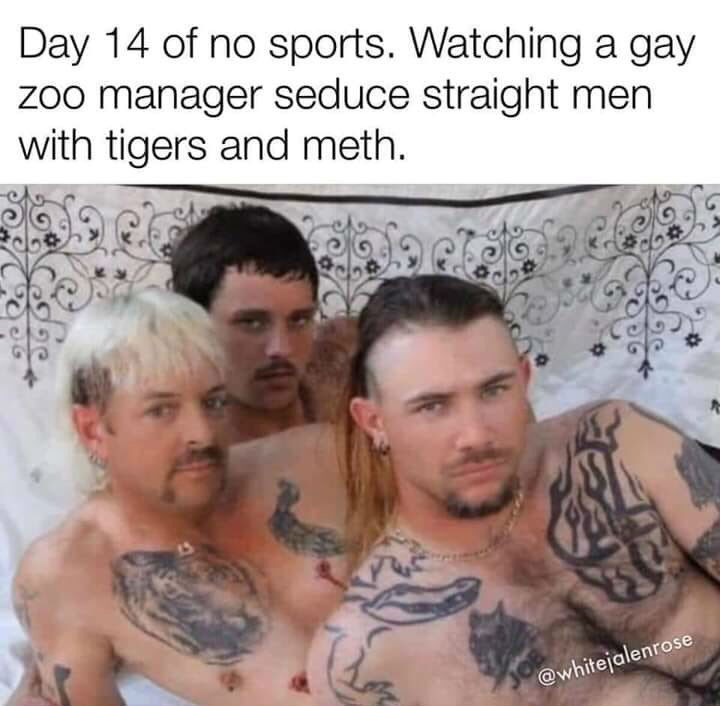 day 14 of no sports
